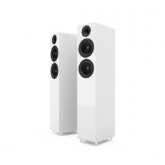 Acoustic Energy: AE309 vloerstaande luidspreker (2 stuks) - Wit